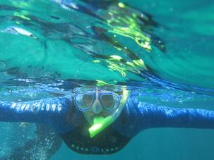 snorkelnai